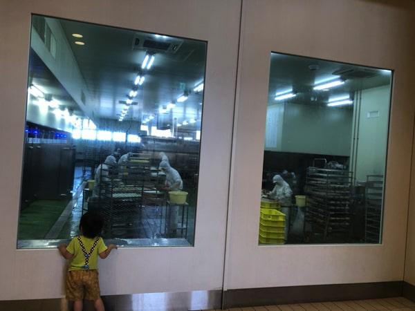 かま栄工場直売店を見学する子ども